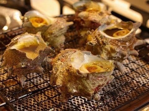 อาหารประจำฤดูใบไม้ผลิของญี่ปุ่น : หอยซาซาเอะ (Sazae) หรือ หอยสังข์