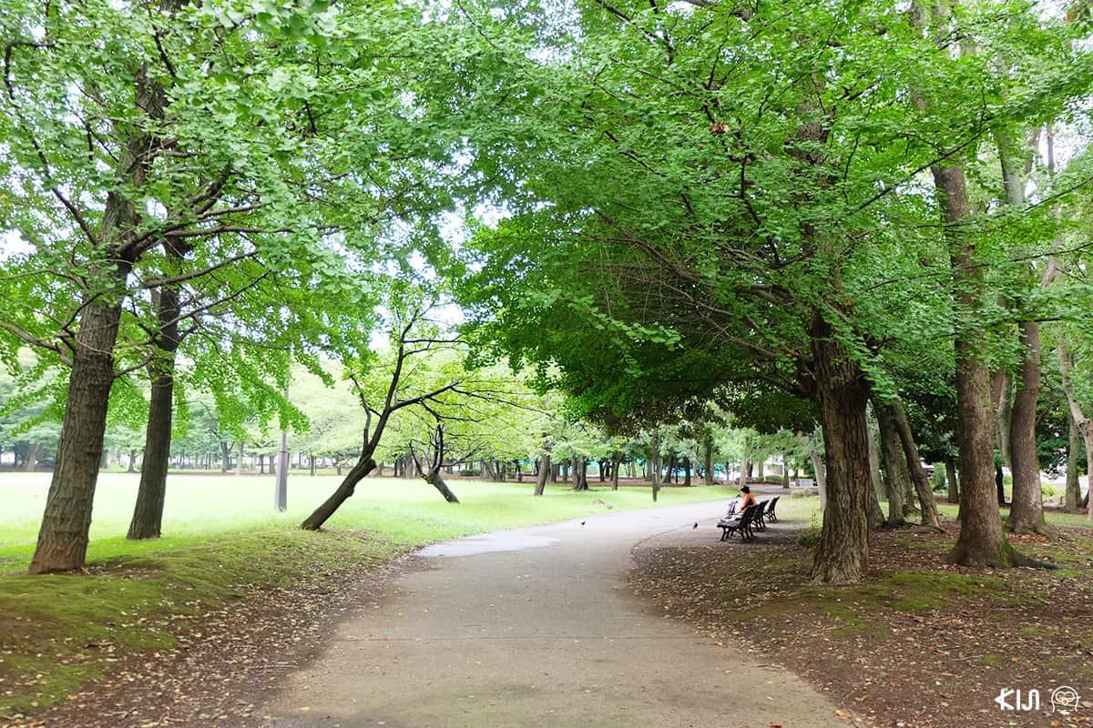 บรรยากาศภายใน Kiyosumi Gardens