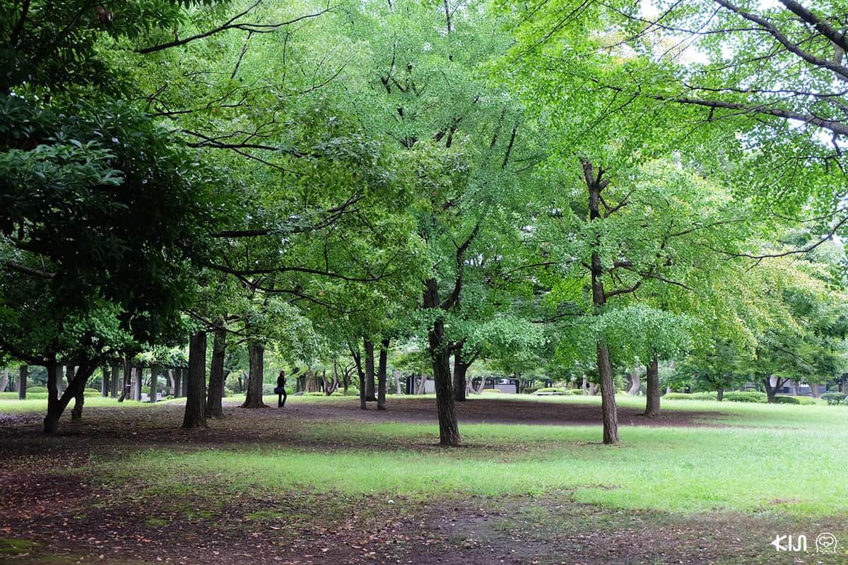 สวนสาธารณะ Kiyosumi Gardens