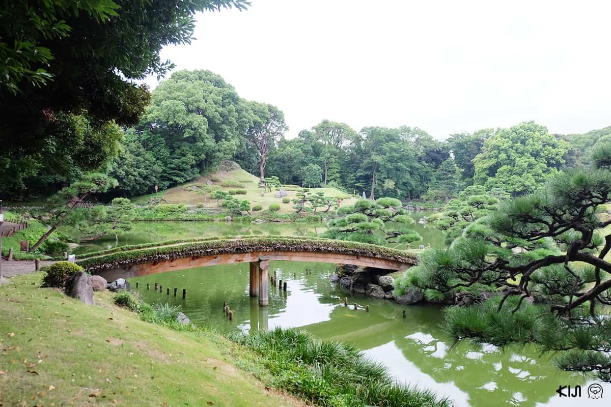 บรรยากาศโดยรอบ Kiyosumi Teen (Kiyosumi Gardens)