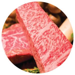 เนื้อวัวฮิดะ เมืองทาคายาม่า (Takayama)