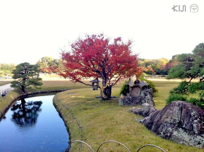 สายน้ำเล็ก ใสแจ๋งที่สวนโครากุเอ็ง