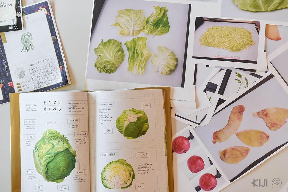 หนังสือภาพศิลปะการตัดแปะเกี่ยวกับพืชผักโดย tupera tupera