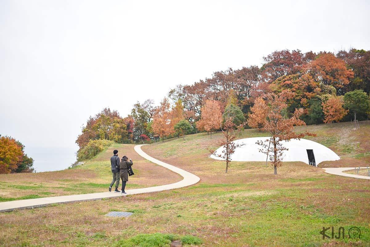 บรรยากาศโดยรอบ Teshima Art Museum