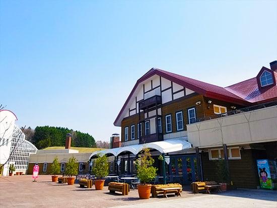 Lunch Tour with Harvest Experience ได้ลองเก็บเกี่ยวพืชผลที่ไร่โยชิดะ (Yoshida Farm) และพาไปชมสวนแบบอังกฤษยูนิการ์เดนท์ (Yuni Garden) ที่เมืองยูนิ (Yuni)
