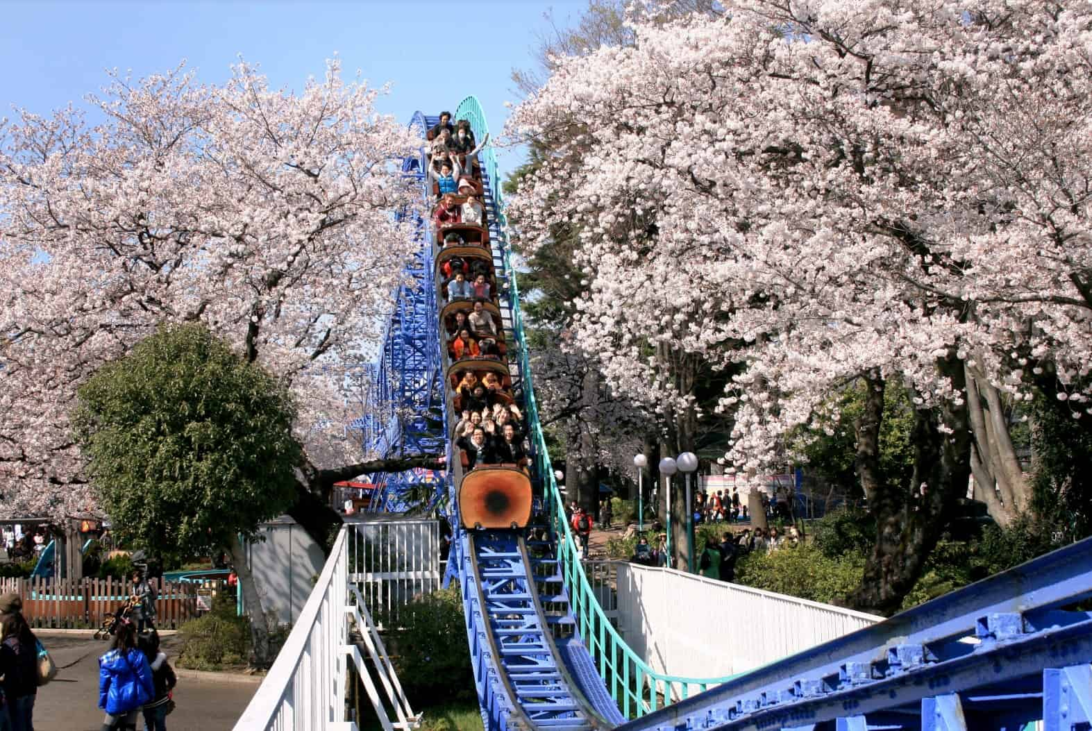 รถไฟเหาะท่ามกลางฤดูใบไม้ผลิในสวนสนุกโทชิมะเอ็น