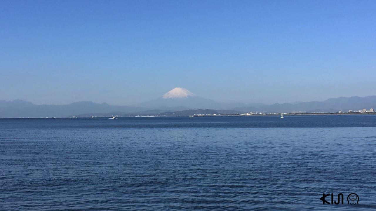 ภูเขาไฟฟูจิที่มองเห็นจากสะพานข้ามเกาะ
