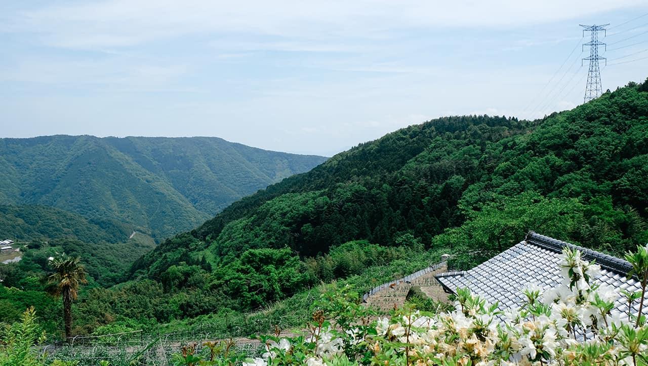 ภูเขาสวยในเมืองมิมะ (Mima)