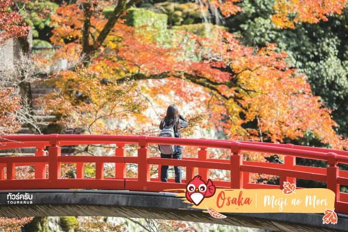 โอซาก้า (Osaka) : วนอุทยานเมจิโนะโมริมิโน (Meiji no Mori Mino Quasi Nation Park)