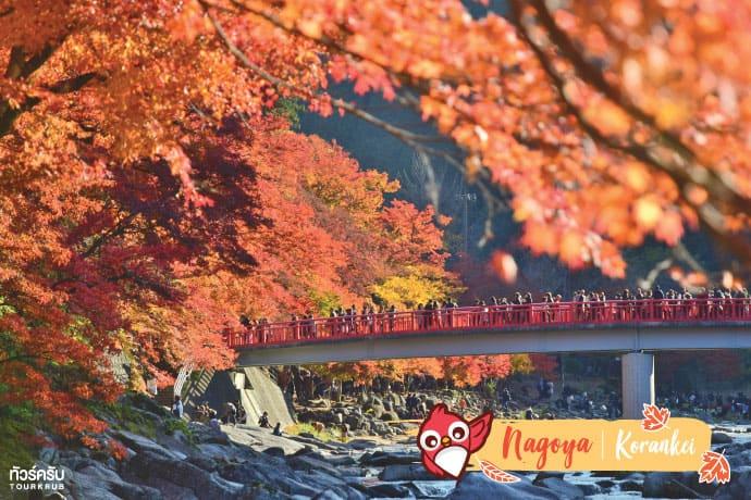 นาโกย่า (Nagoya) : หุบเขาโครังเค (Korankei)