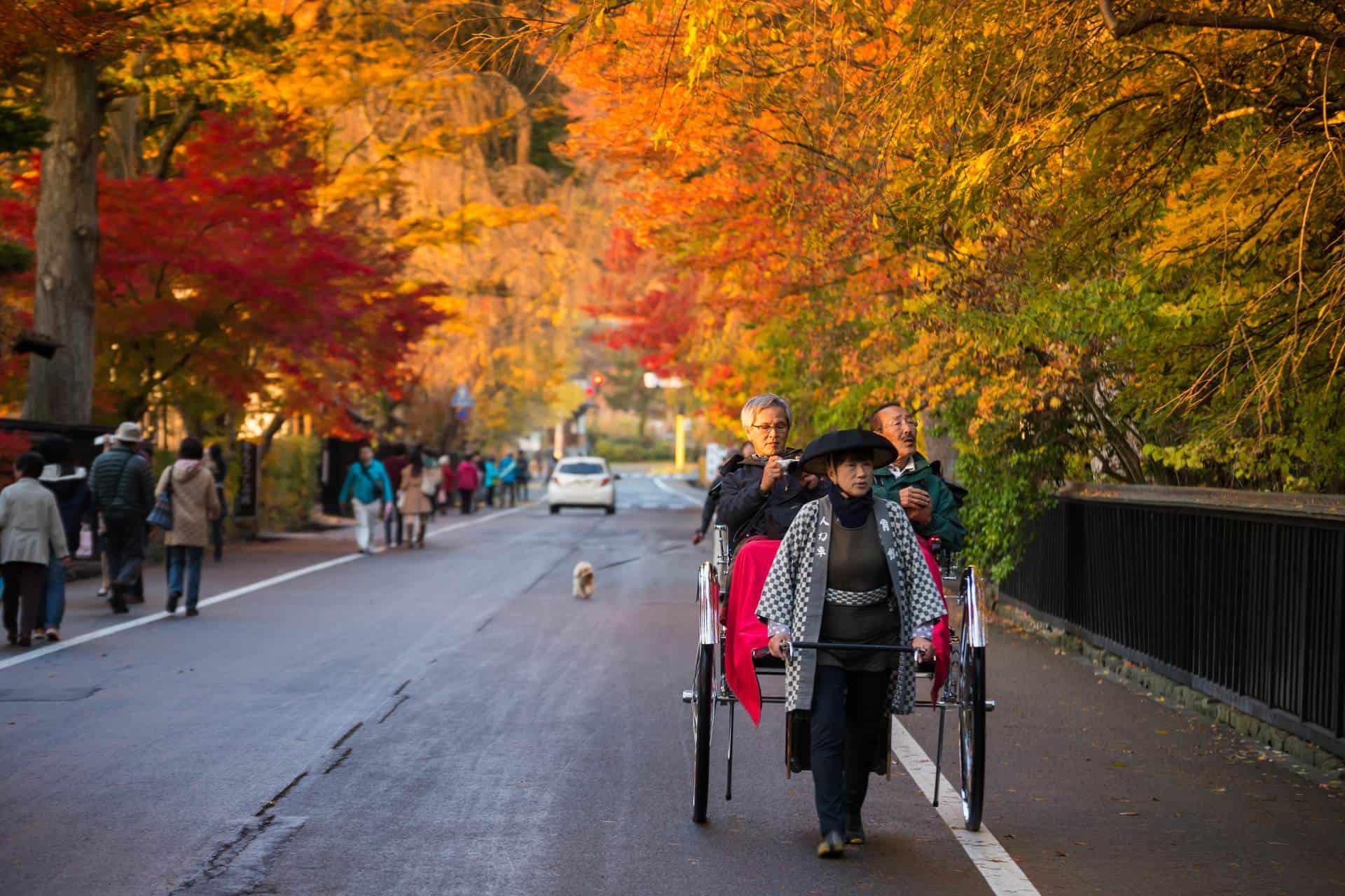 ถนนบริเวณหมู่บ้านซามูไรคาคุโนดาเตะในฤดูใบไม้ร่วง