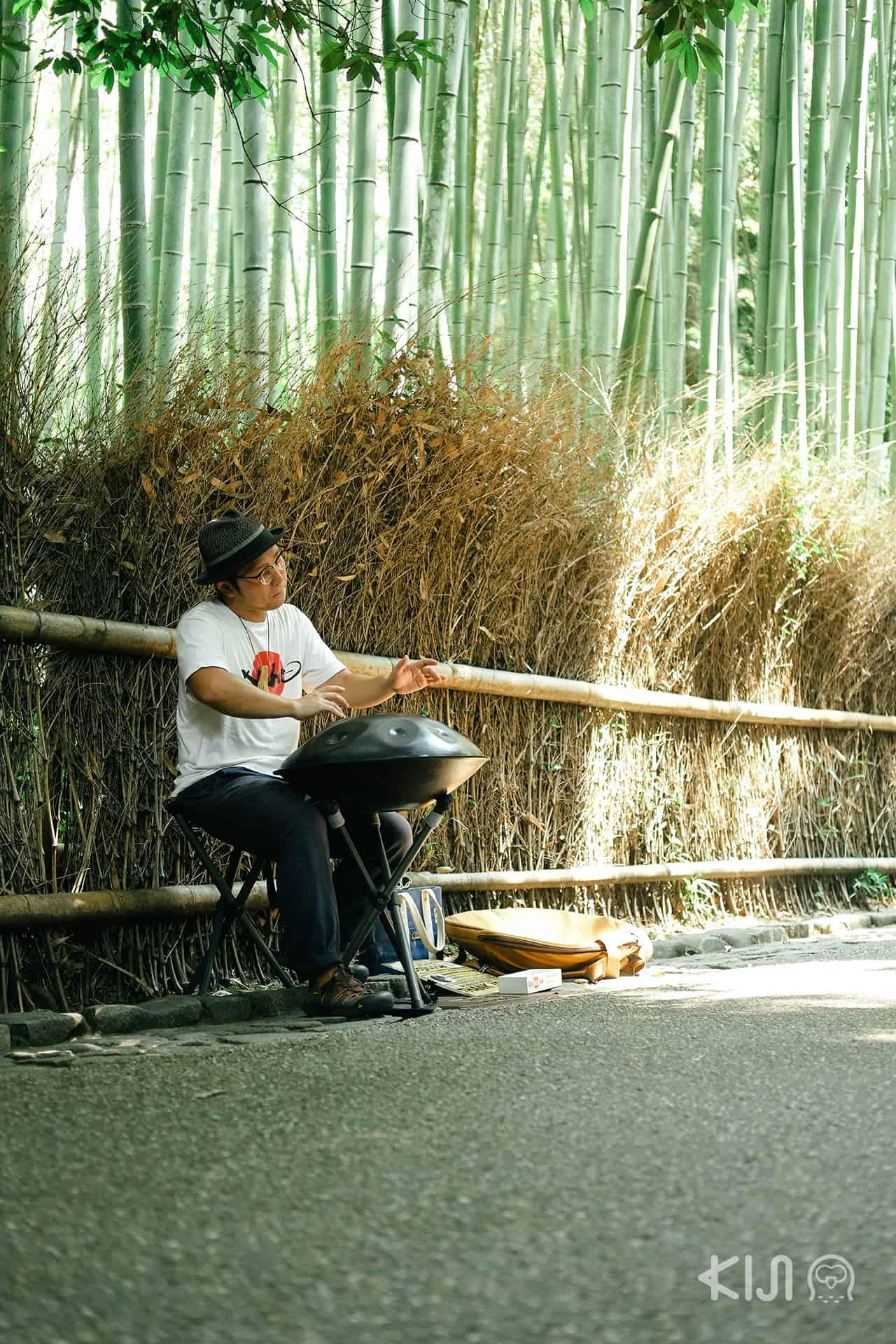 """Kyoto Sagano Walk & Bamboo Forest หรือที่คนไทยเราเรียกกันว่า """"ป่าไผ่"""""""