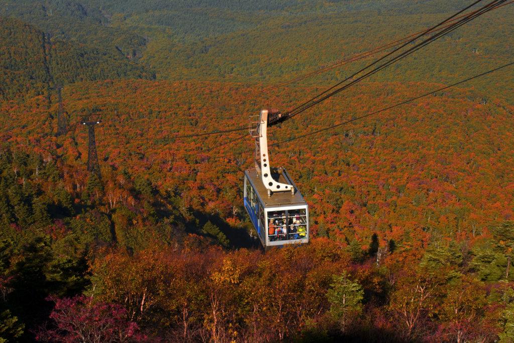 บรรยากาศภูเขาฮักโกดะที่เปลี่ยนเป็นสีส้ม สามารถนั่งกระเช้าชมวิวแบบพาโนรามาได้