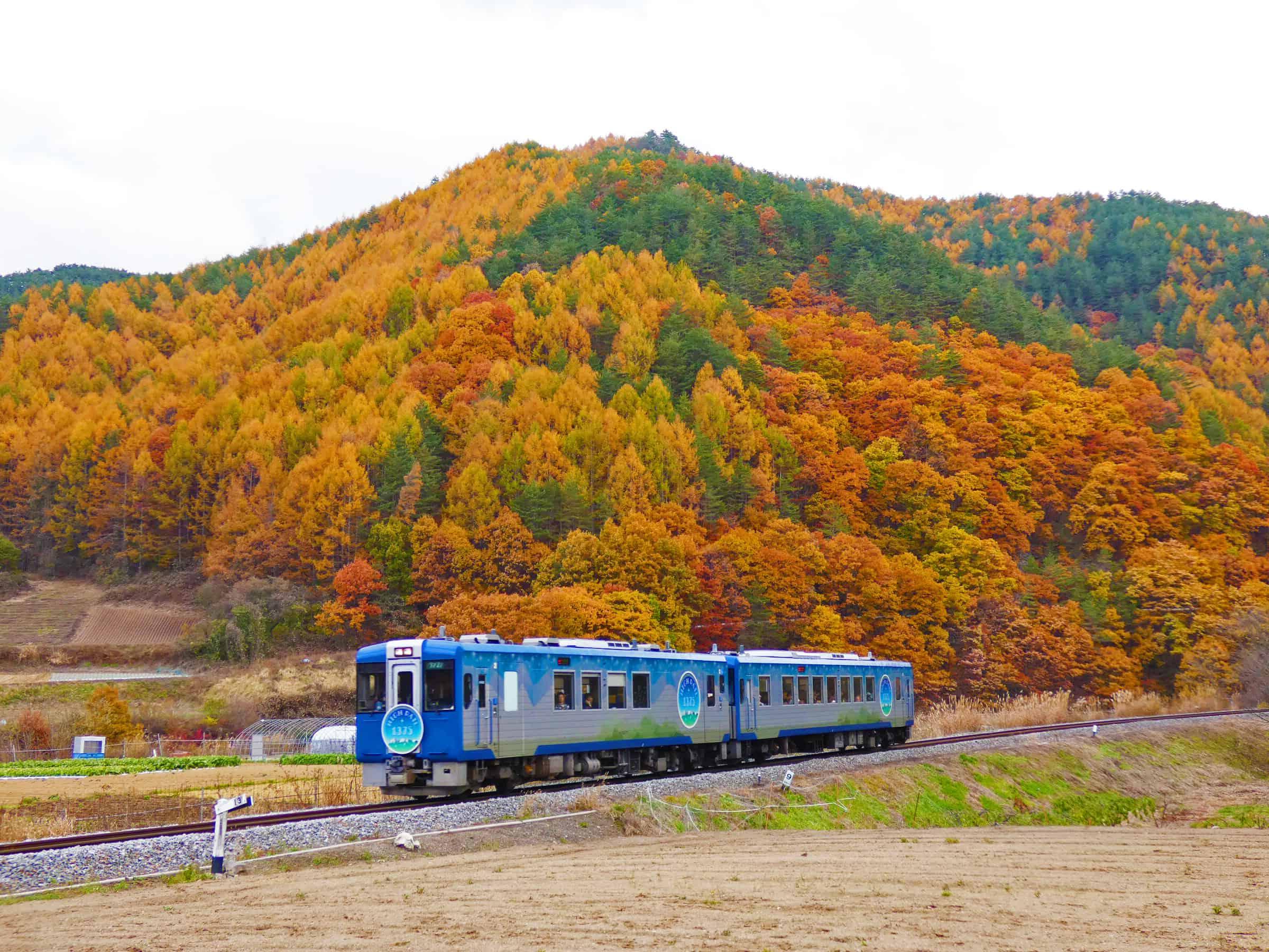 รถไฟ HIGH RAIL 1375 ที่แล่นผ่านธรรมชาติในฤดูใบไม้ร่วง