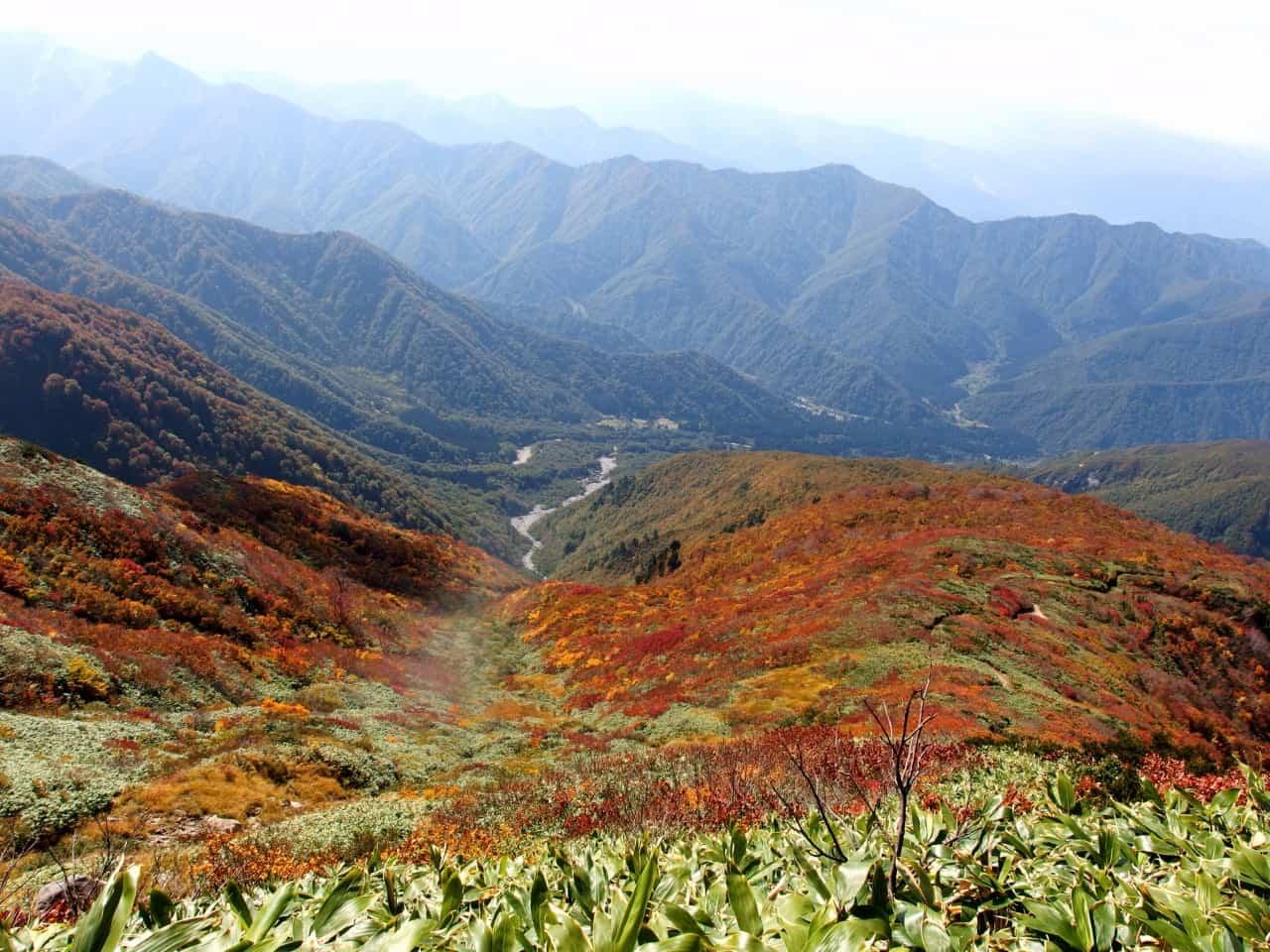 ทิวทัศน์ของเทือกเขาในฤดูใบไม้ร่วงที่จังหวัดนีงาตะ