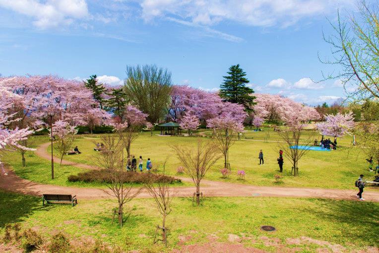 สวนสาธารณะคะโจ (Kajo Park) จังหวัดยามากาตะ