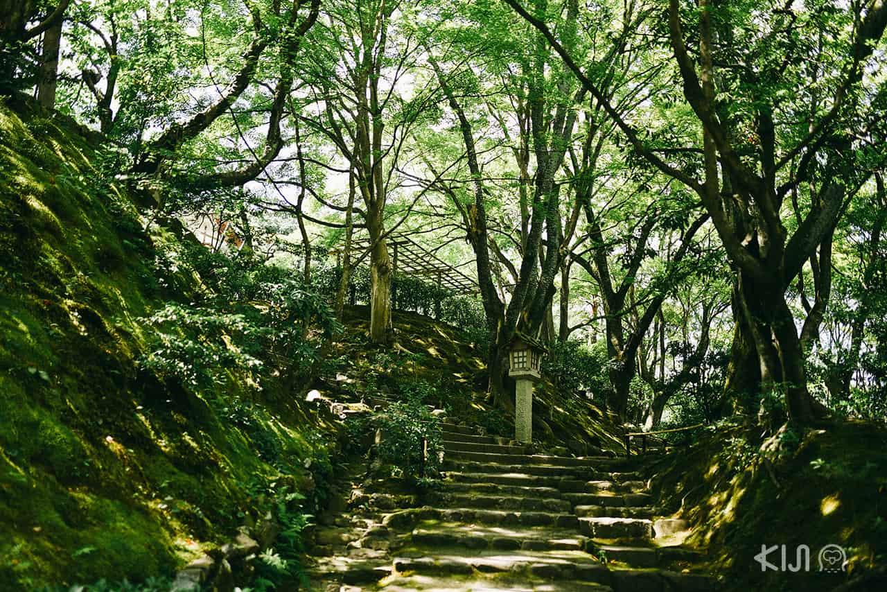 ภายในวัด Jojakkoji Temple ย่านอาราชิยาม่า (Arashiyama)