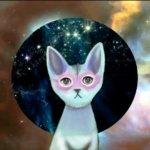 Kitty_AI