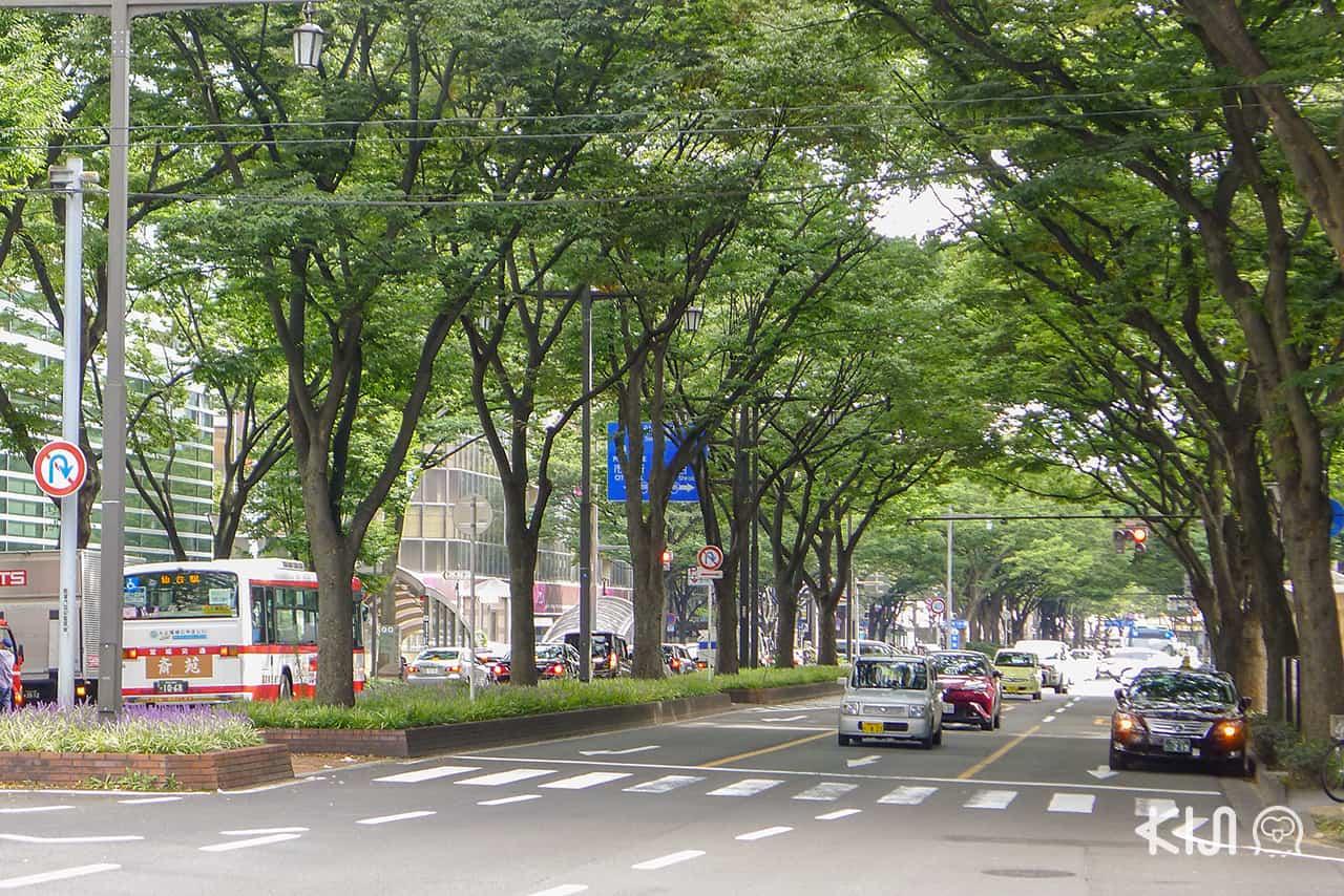 เมืองเซ็นได (Sendai)