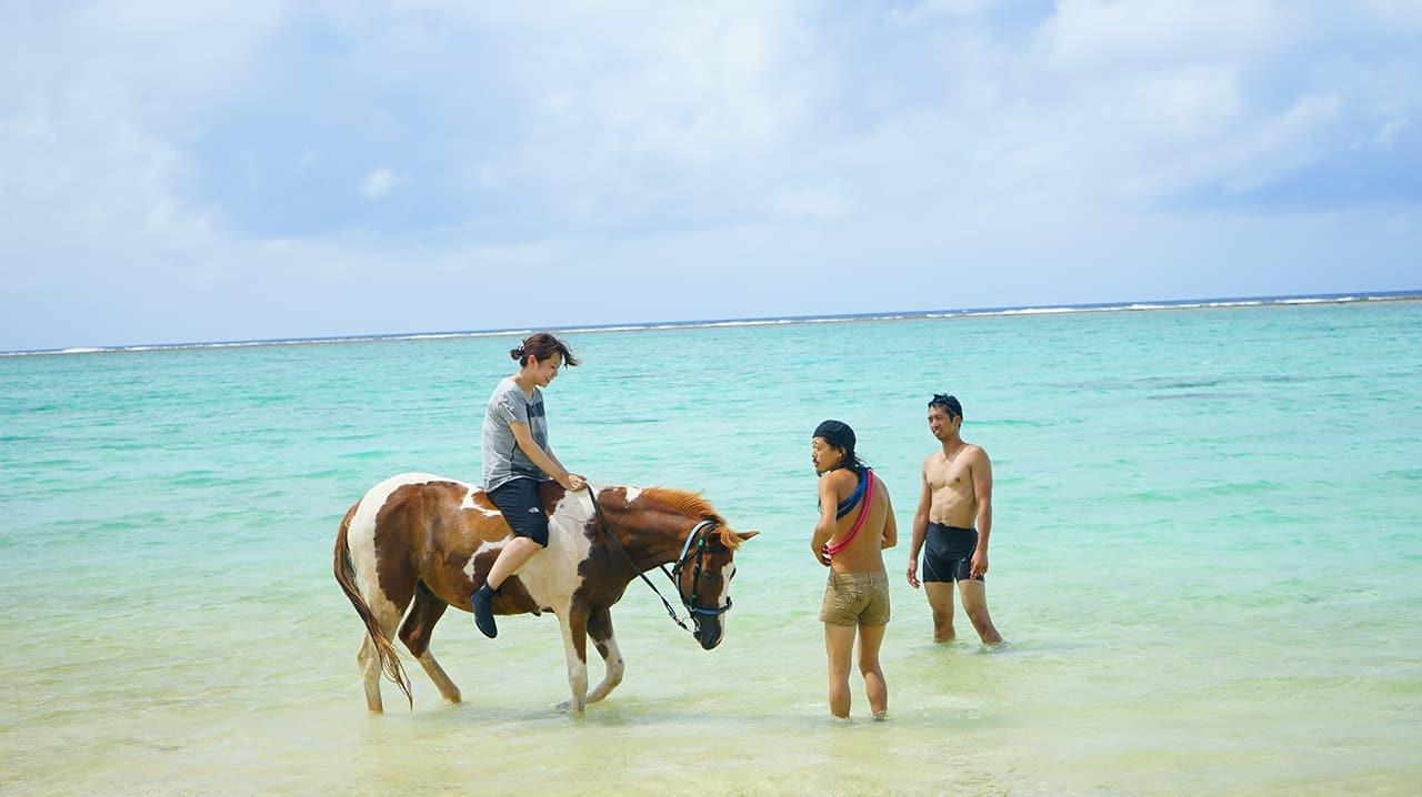 บริการขี่ม้าริมชาดหาด Mumin Bokujou