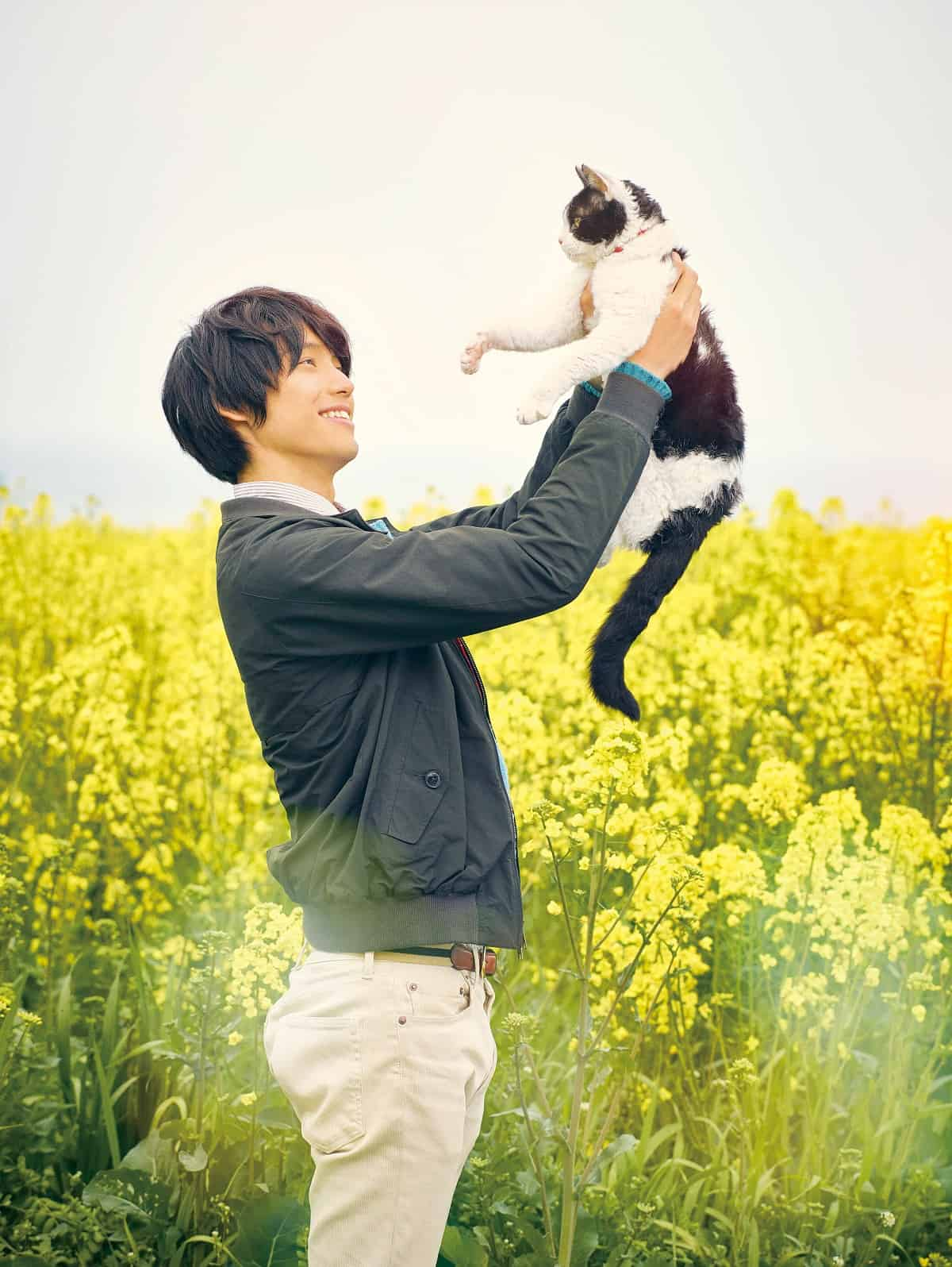 The Travelling Cat Chronicles : 旅猫リポート