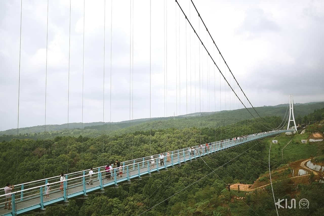 Mishima Skywalk สะพานแขวนยาวที่สุดในญี่ปุ่น