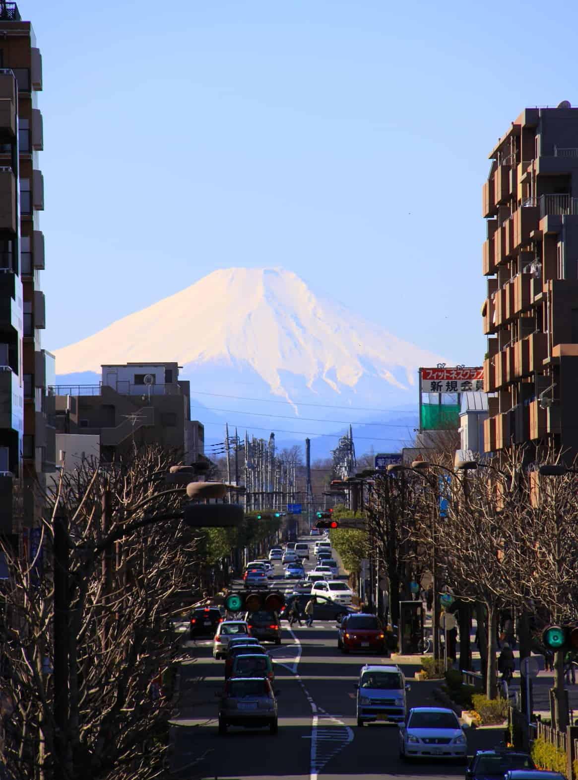 ชมภูเขาไฟฟูจิจาก Fujimi Terrace