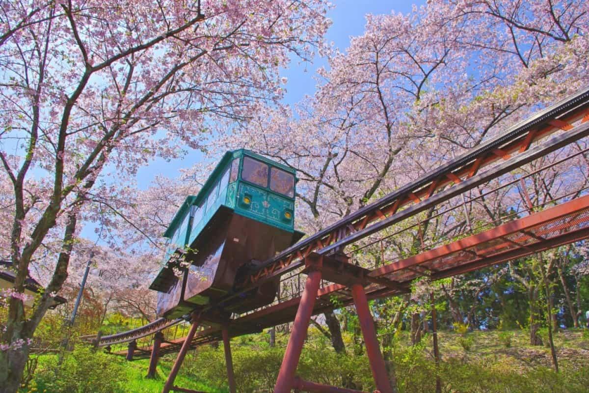 สวนปราสาทเก่าฟุนะโอกะ (Funaoka Joshi Park)