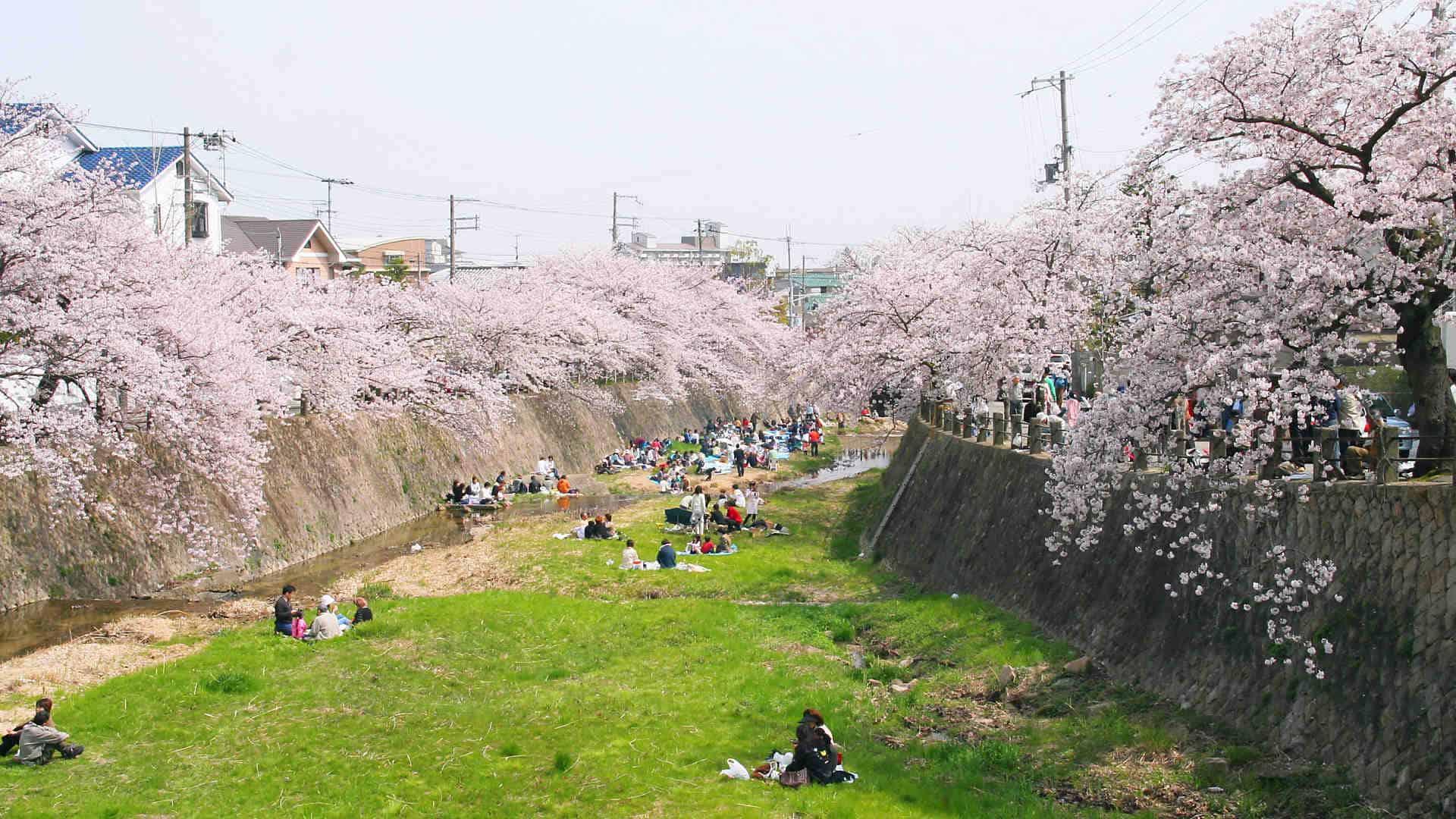 Ashiyagawa Park