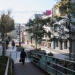 Cat_Street,_Ura_Harajuku_2