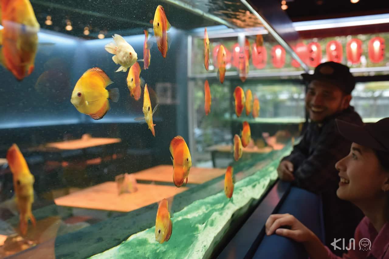 ร้านอาหารญี่ปุ่น Tank Restaurant & Cafe บรรยากาศแสน โรแมนติก