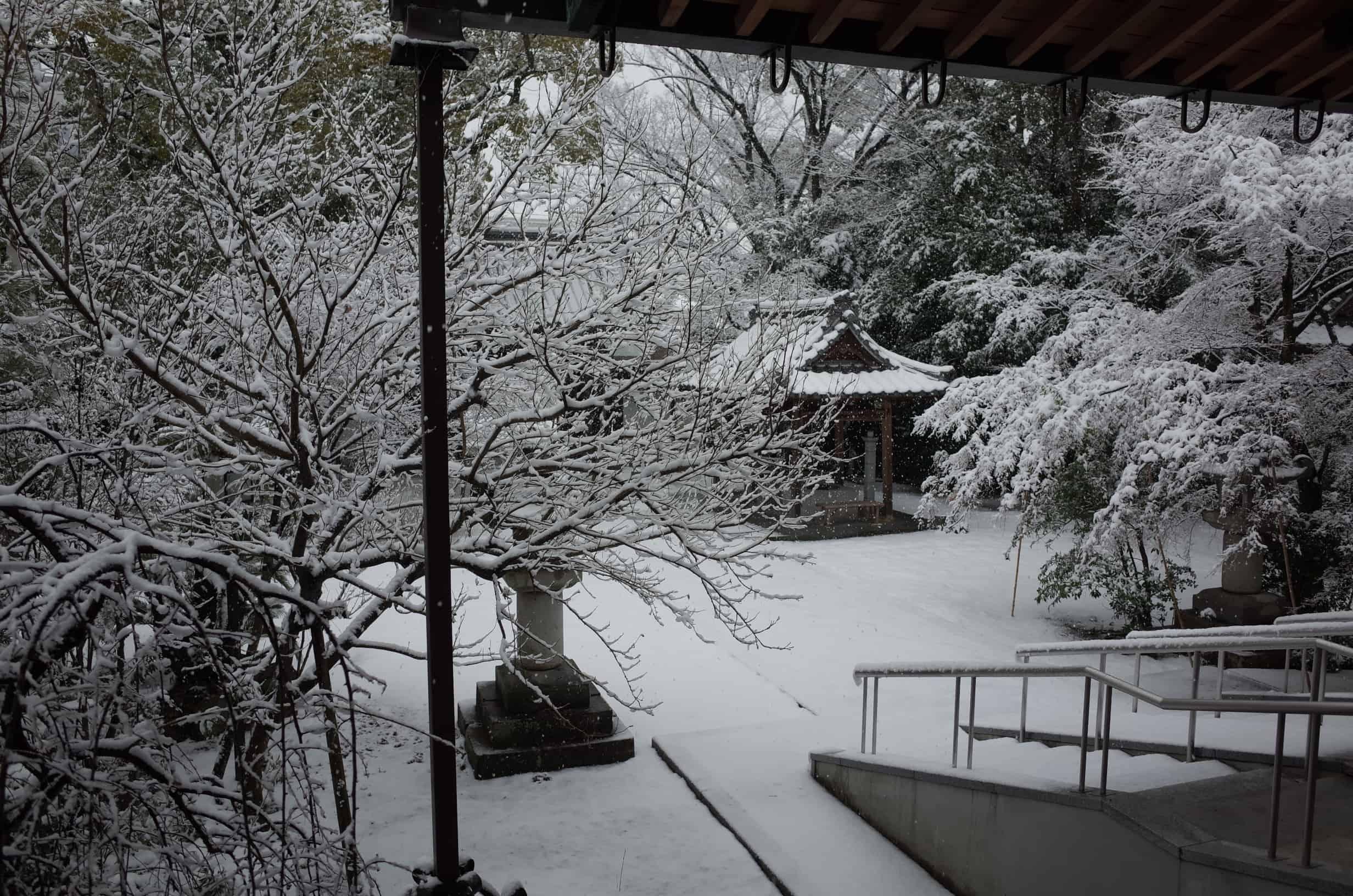 ในฤดูหนาว มีหิมะที่ปกคลุมวัดเมียวกัง (Myogwanji)