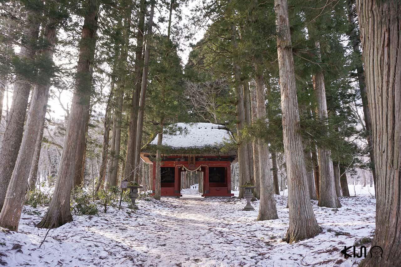 ศาลเจ้าโทกาคุชิ (Togakushi Shrine) จังหวัดนากาโน่ (Nagano)