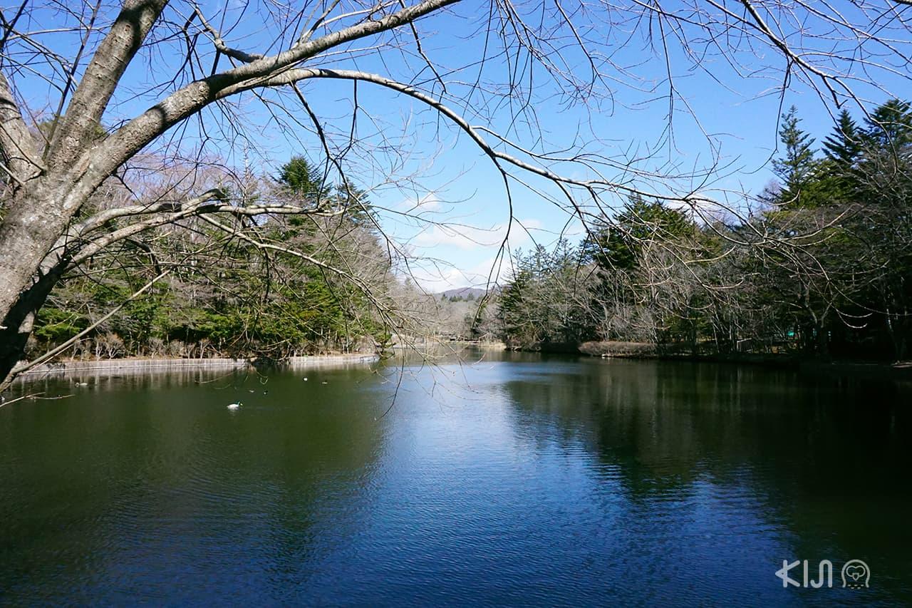 Kumoba Pond at Karuizawa