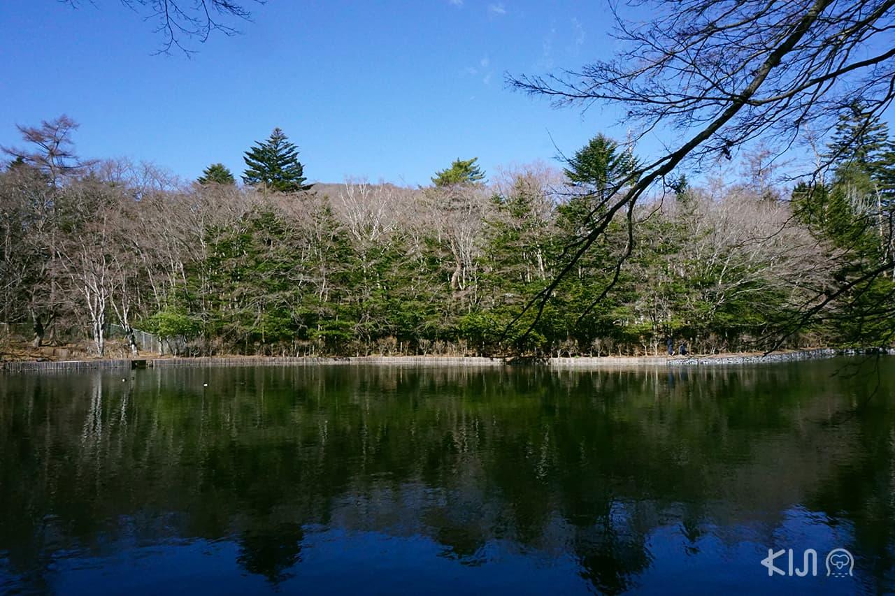 Kumoba Pond สระน้ำขนาดใหญ่