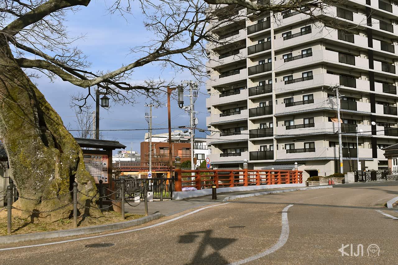 ตีกและอาคารในย่าน Imaicho