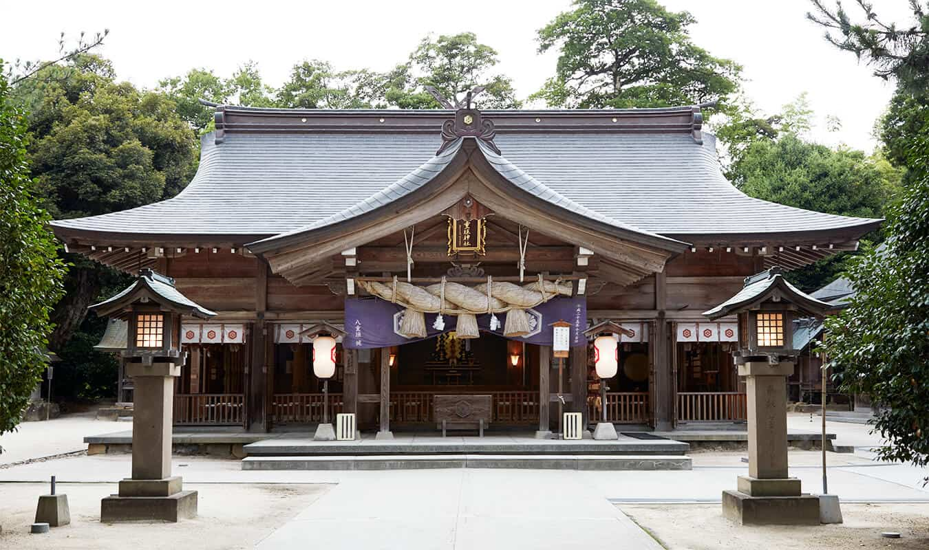 Shimanekko Tour : Yaegaki Shrine