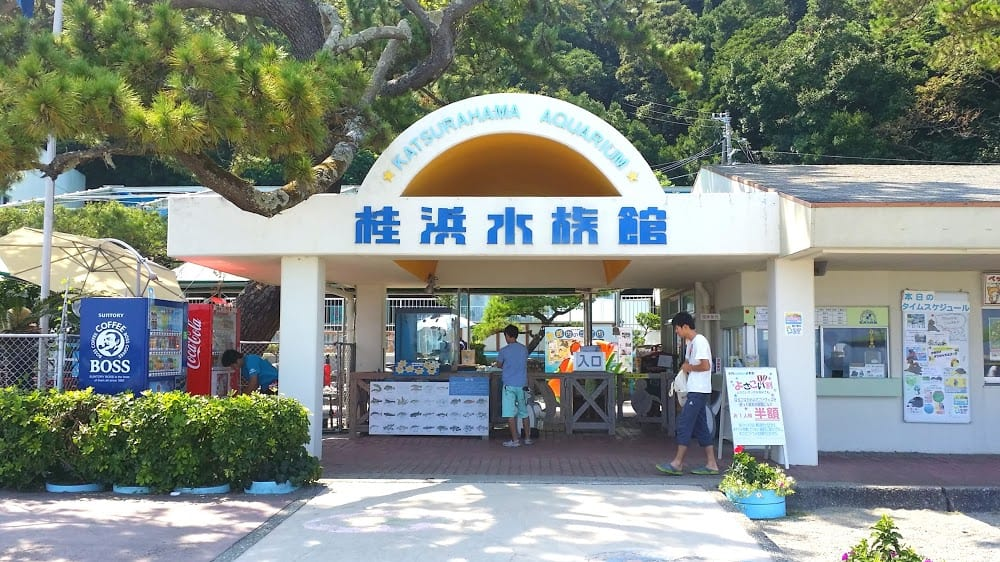 คัตสึระฮามะ อควาเรียม (Katsurahama Aquarium) เมืองโคจิ (Kochi)