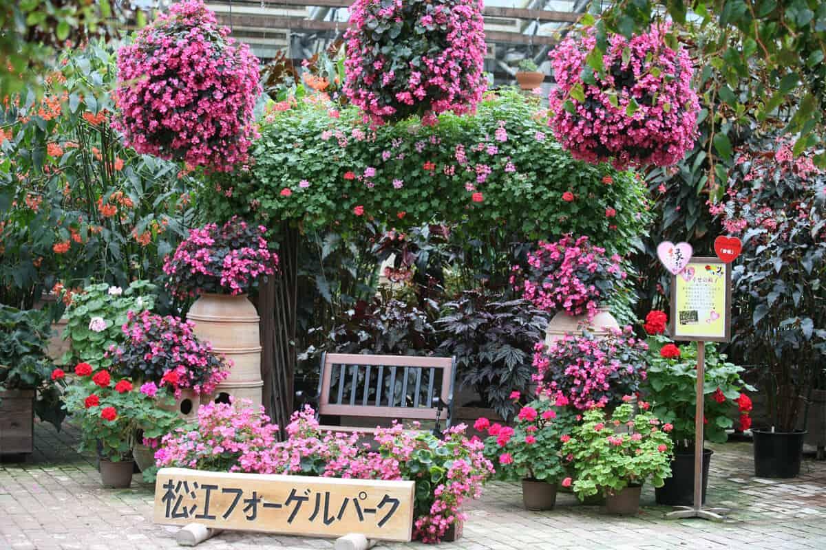 สวนมัตสึเอะ (Matsue Vogel Park)