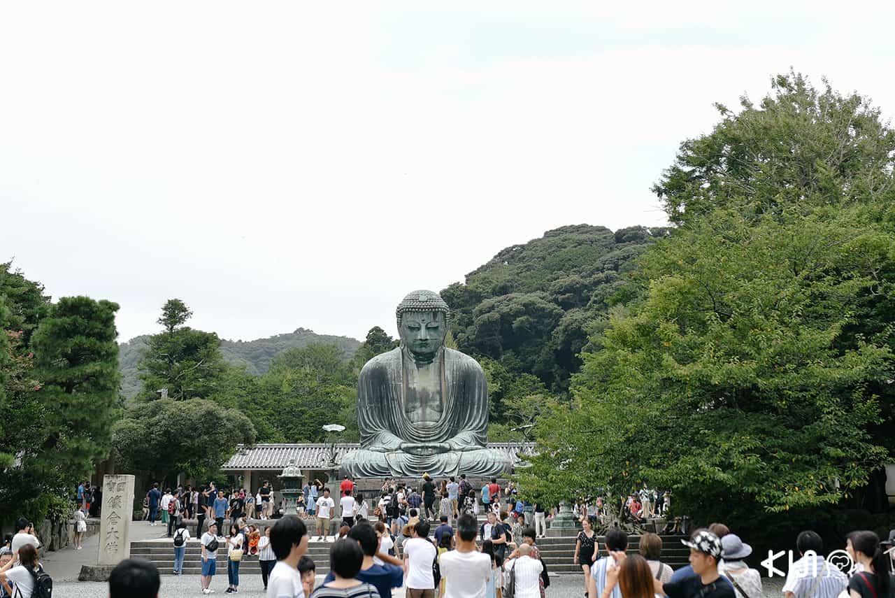 พระใหญ่ไดบุทสึ (Daibutsu) ที่วัดโคโตคุอิน (Kotoku-in Temple)