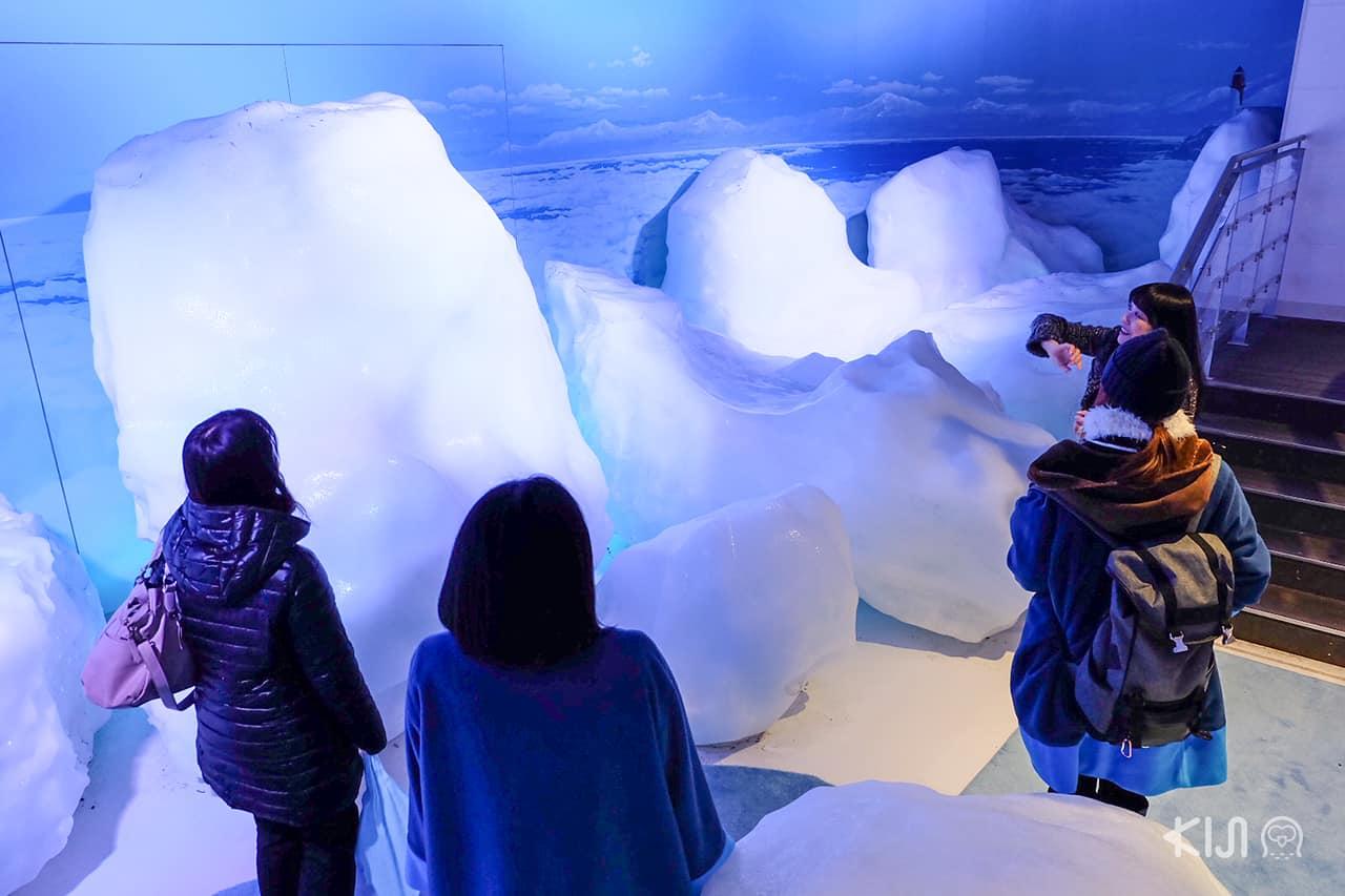 Okhotsk Ryuhyo Museum จังหวัดฮอกไกโด