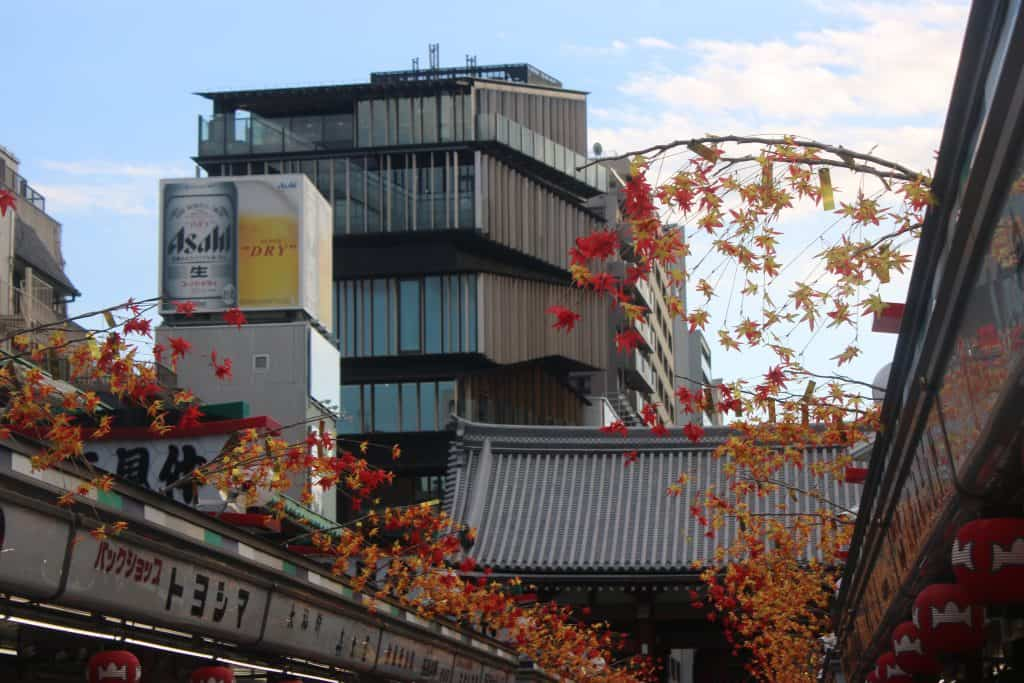 Asakusa Culture Tourist Information Center ในช่วงฤดูใบไม้เปลี่ยนสี