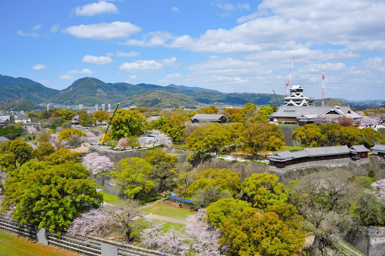 ปราสาทคุมาโมโตะปัจจุบันยังปิดซ่อมแซม แต่ยังถือเป็นจุดชมซากุระที่งดงามของเมืองคุมาโมโตะ