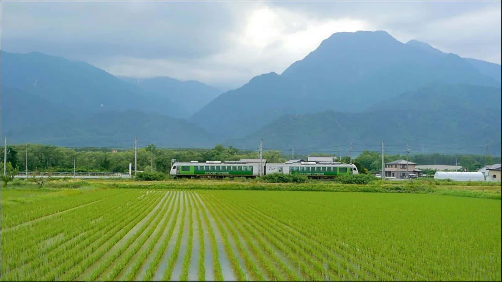 Joyful Train Furusato