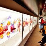 Genbi Colorful Exhibit (Carissa)