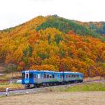 High Rail Exterior (Autumn)