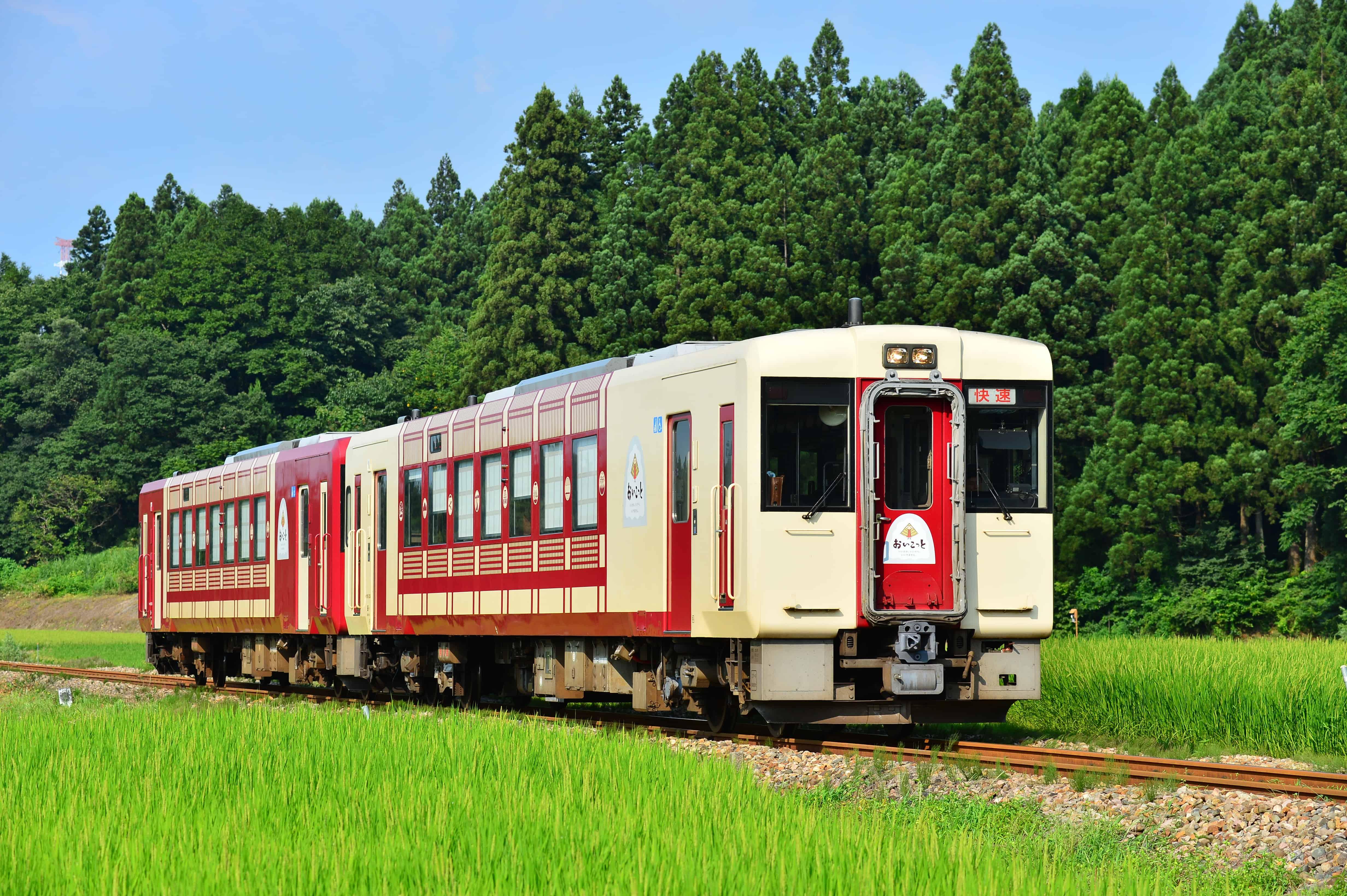 Joyful train - Oykot