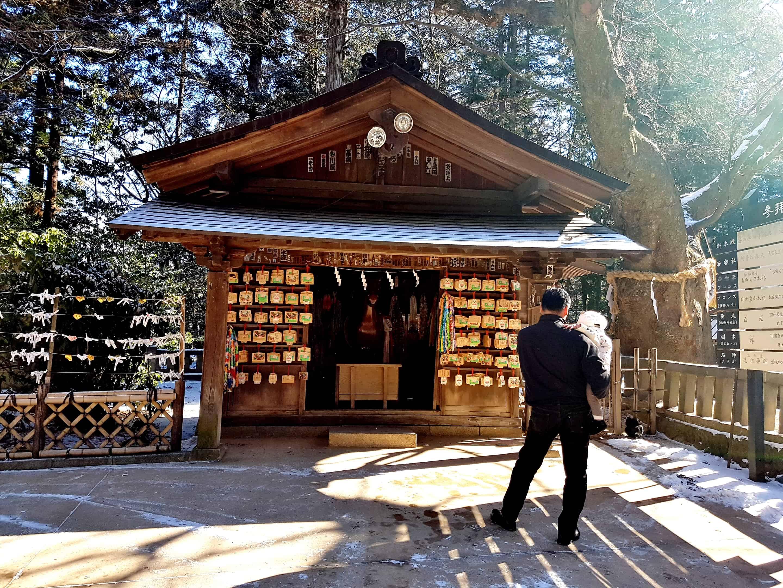 Joyful Train ศาลเจ้าโฮตากะ (Hotaka Shrine)