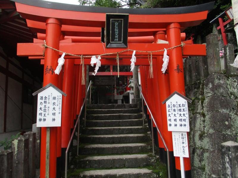 ศาลเจ้า Kumamoto ขึ้นชื่อในเรื่องการขอพรเกี่ยวกับโชคลาภและประสบความสำเร็จ