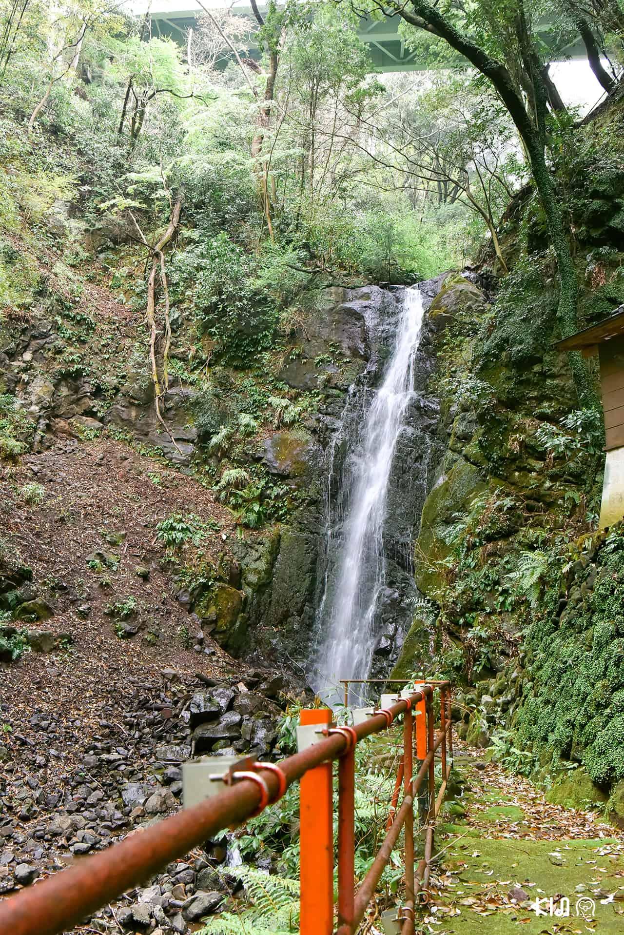 น้ำตกฟูโดะ ในเมืองยูกาวาระ จังหวัดคานางาวะ